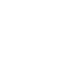 checked letter white icon